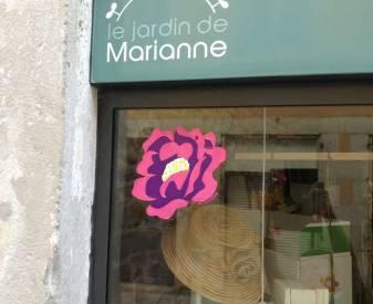 une rose de Provins improviser avec Marianne