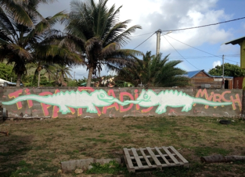 Iguanes2